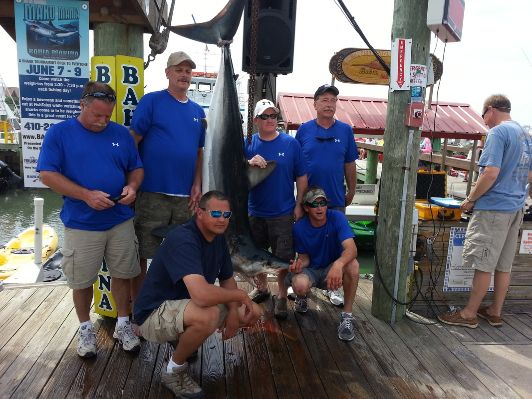 Day 3 mako mania moore bills gets 1st place ocean for Bills fishing report